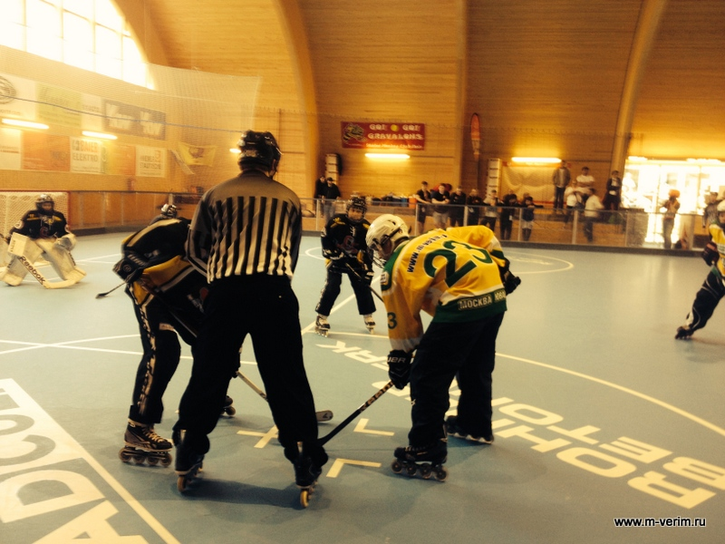 International Inline-Skaterhockey Federation